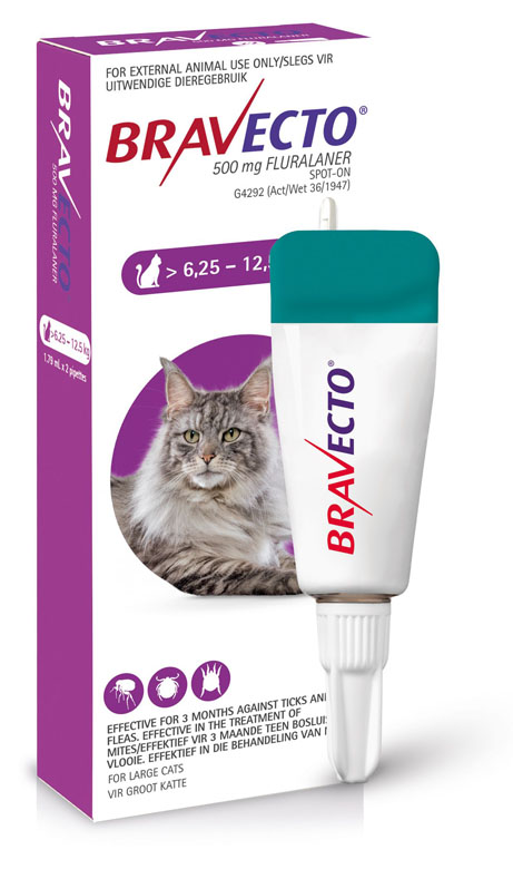 Bravecto Spot-On Cat 6.25-12.5kg Large